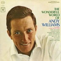 The Wonderful World of Andy Williams — Andy Williams