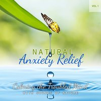 Calming the Troubled Mind With Sounds of Nature - Volume 1 — Natural Anxiety Relief