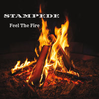 Feel the Fire — Stampede