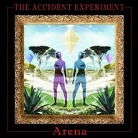 Arena — The Accident Experiment