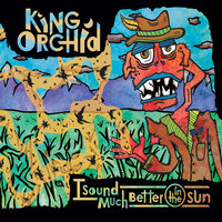 I Sound Much Better In the Sun — King Orchid