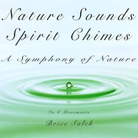 Nature Sounds and Spirit Chimes: A Symphony of Nature in 6 Movements — Brice Salek