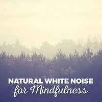 Natural White Noise for Mindfulness — Sounds of Nature White Noise for Mindfulness, Meditation and Relaxation