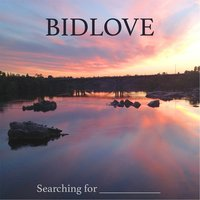 Searching for _______ — Bidlove