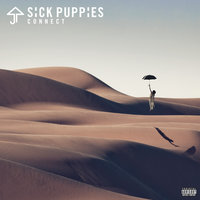 Connect — Sick Puppies