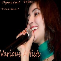Special Hits, Vol. 1 — сборник