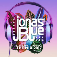 Jonas Blue: Electronic Nature - The Mix 2017 — Jonas Blue
