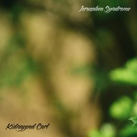 Jerusalem Syndrome — Kidnapped Carl