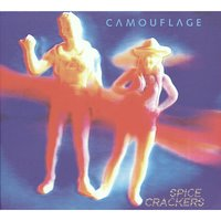 Spice Crackers — Camouflage
