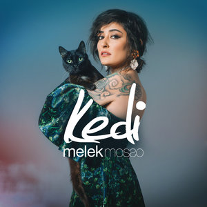Melek Mosso - Kedi