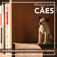 Música para Cães: Sons Relaxantes para Descontrair o Seu Cachorro — RelaxMyDog, Relax My Puppy, Dog Music Dreams, Pet Music Therapy