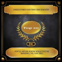 You'll Never Know What You're Missing ('Til You Try) — Emile Ford, The Checkmates