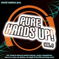 Mental Madness Pres. Pure Hands Up! Vol. 1 — Mental Madness