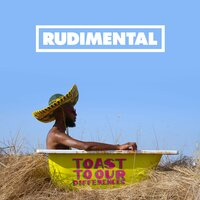 Toast to our Differences — Rudimental