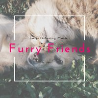 Furry Friends - Easy-Listening Music For Pets — Gentry Bronson