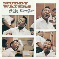 The Folk Singer — Muddy Waters