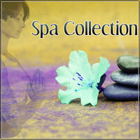 Spa Collection – Calmness Music for Relaxing Time, Spa & Wellness, Pure Relaxation, Massage Therapy, Nature Sounds — Spa Zen