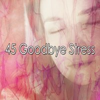 45 Goodbye Stress — Spa Relaxation