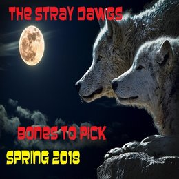 Bones to Pick — The Stray Dawgs
