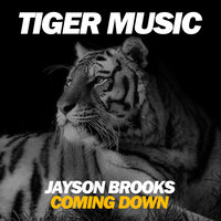 Coming Down — Jayson Brooks