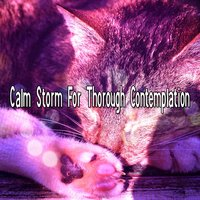 Calm Storm For Thorough Contemplation — Thunderstorms