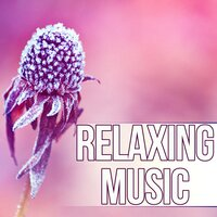 Relaxing Music - Music for Pregnancy and Childbirth, Relaxing Soothing Instrumental Pieces, Time to Relax — Relaxing Evening Music Universe
