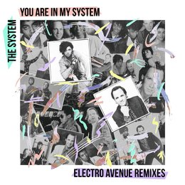 You Are in My System. — The System