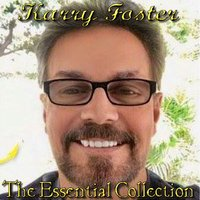 The Essential Collection — Karry Foster