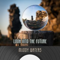 Look Into The Future — Muddy Waters