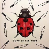 Love Is the Cure — Joey