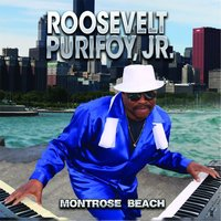 Montrose Beach — Roosevelt Purifoy, Jr.