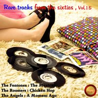 Rare Tracks from the Sixties, Vol. 15 — сборник