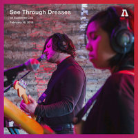 See Through Dresses on Audiotree Live — See Through Dresses