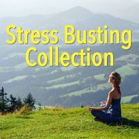 Stress Busting Collection — сборник