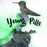 Ascendentes — Young Pills
