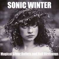 Magical Silver Bullets and Hell Birdsongs — Sonic Winter