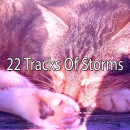 22 Tracks Of Storms — Rain Sounds Sleep