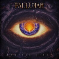Undying Light — Fallujah