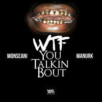 Wtf You Talkin Bout — Monseani, Manurk