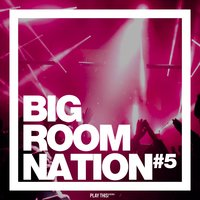 Big Room Nation, Vol. 5 — сборник