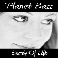 Beauty of Life — Planet Bass