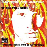 Electronic Proclomations Of The Wild Child — сборник