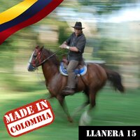 Made In Colombia / Llanera / 15 — сборник