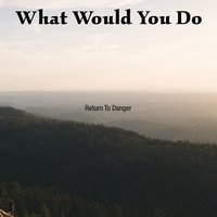 What Would You Do — Return To Danger
