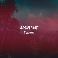 #15 Ambient Sounds for Meditation, Spa and Relaxation — Asian Zen Spa Music Meditation, Japanese Relaxation and Meditation, Guided Meditation