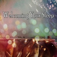 Welcoming Your Sleep — Ocean Sounds Collection