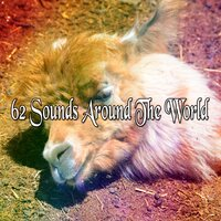 62 Sounds Around the World — Baby Sweet Dream