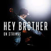 Hey Brother — The Modern String Quintet