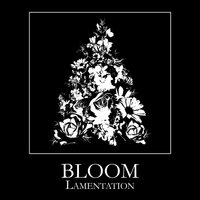 Lamentation — Bloom