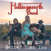 I Like My Dog Better Than You — Hollingsworth Band